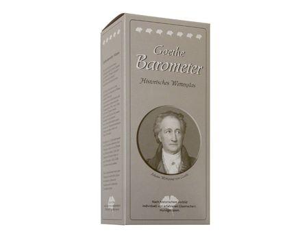 Goethe Device (Barometer) 002